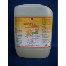 DURGA Detergente Universale Citrus D10 -  Confezione da 5 litri