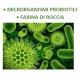 Microorganismi effettivi (o efficaci)