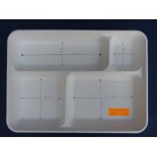 Piatti biodegradabili e compostabili a 4 scomparti da cm 37 x 27 - Pacco da 20 pezzi
